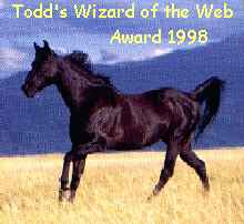 Wizard Of The Web Award